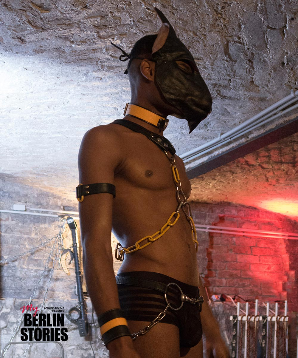 GRIFF Berlin bondage harnesses